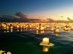 Lanterns Floating Hawaii
